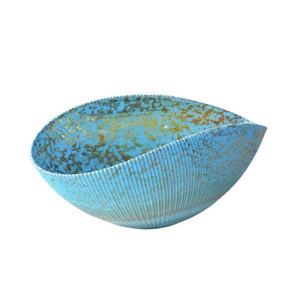 shell of hope